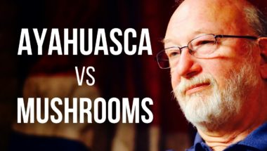 Ayahuasca vs Mushrooms - Dennis McKenna on DMT & Psilocybin