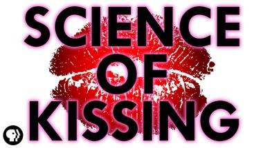 The Science of Kissing