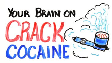 Your Brain on Drugs: Crack Cocaine