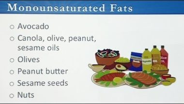 Food and Addiction: Dietary Fats: The Good the Bad and the Ugly