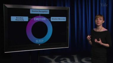 Human Emotion 16.1: Physical Health I (Sleep)