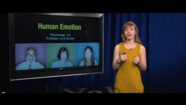 Human Emotion 3.1: Emotion in Animals