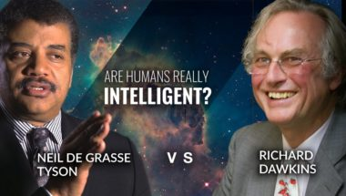 Are Humans Really The Most Intelligent Species?