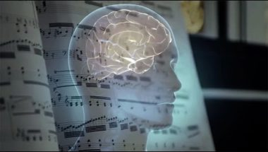 Are musical tastes cultural or hardwired in the brain?