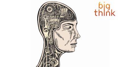 Dan Harris: Hack Your Brain's Default Mode with Meditation