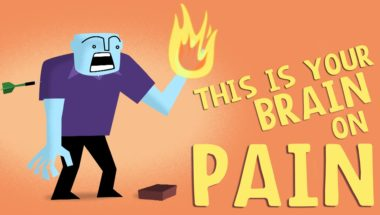 How does your brain respond to pain?