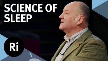 The Science of Sleep: Melatonin to Neural Pathways