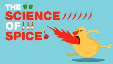 Rose Eveleth: The science of spiciness