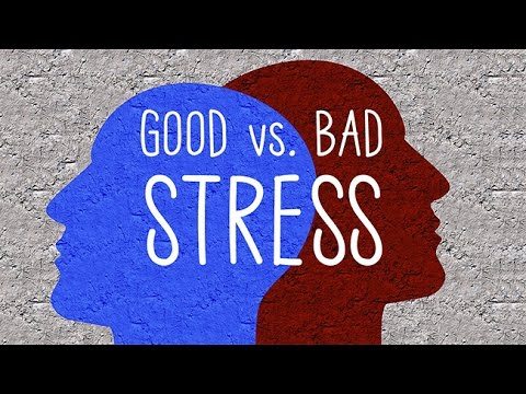 good stress or bad stress The word 'stress' has such a negative connotation and we do everything we can to avoid it – meditate, exercise, sleep – but very few people realise that we actually need a certain amount of stress to perform in our day-to-day life.