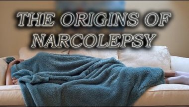 The Origins of Narcolepsy
