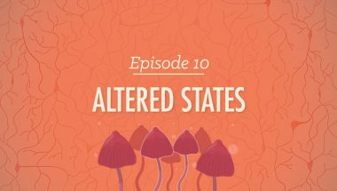 Crash Course Psychology #10: Altered States