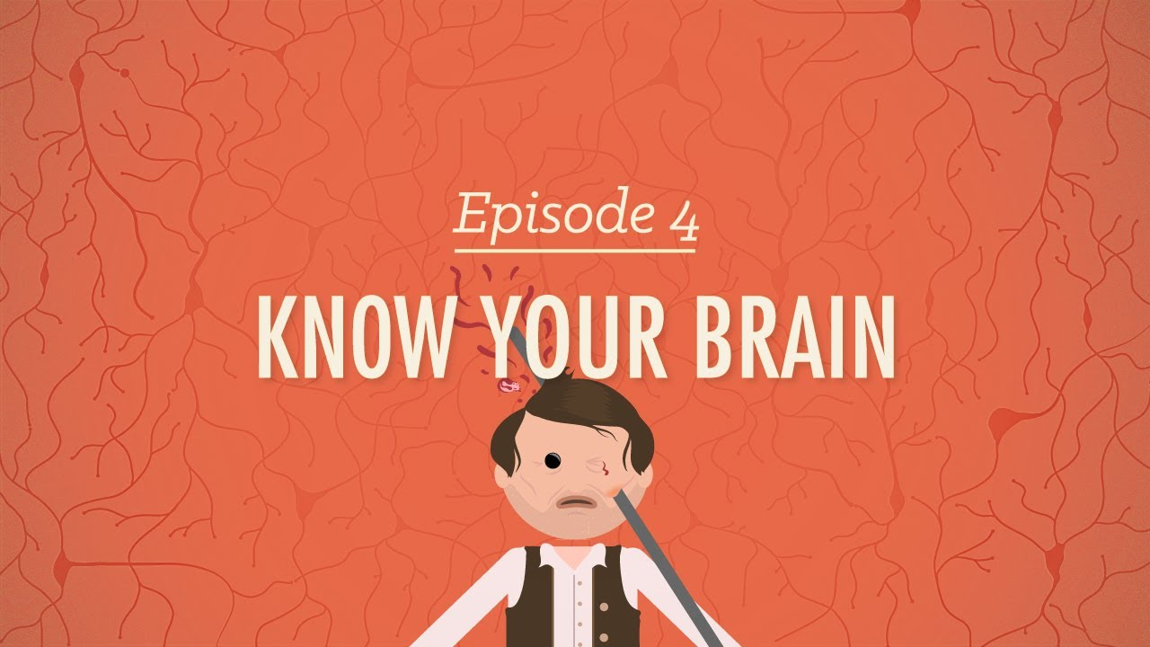Crash Course Psychology #4: Meet Your Master - Getting to Know Your ...