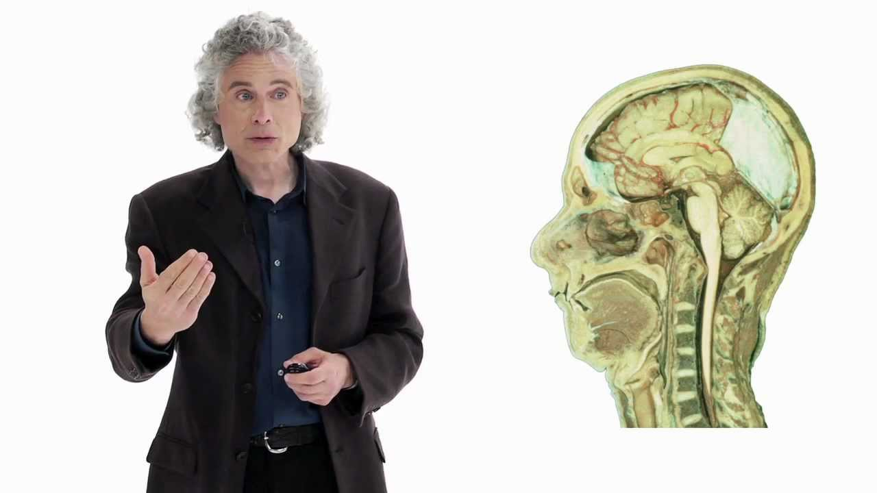 Steven Pinker Human Nature