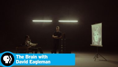 David Eagleman: The Brain - Unconscious Cues