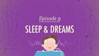 Crash Course Psychology #9: To Sleep, Perchance to Dream