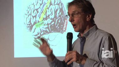 Colin Blakemore: Neuro-Everything, Revealing the Secrets of the Human Brain