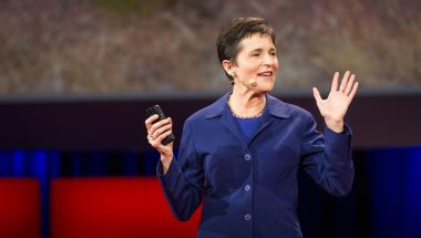 Deborah Gordon: What ants teach us about the brain, cancer and the Internet