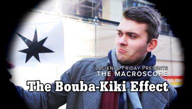 The Bouba-Kiki Effect