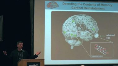 Anthony Wagner: Brain Patterns and the Mind