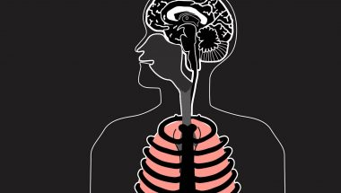 The Neural Origins of Breathing