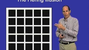 Jeremy Nathans: The Hering Optical Illusion
