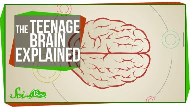The Teenage Brain Explained