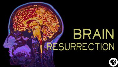 Ways to Bring the Brain Dead 'Back to Life'