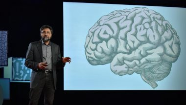 Anjan Chatterjee: How your brain decides what is beautiful
