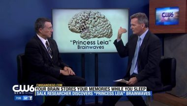 Terry Sejnowski: Discovery of Brain Waves