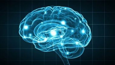 Andre Fenton: The Basics Of Neural Science