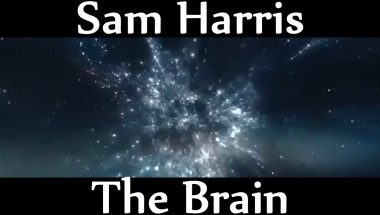 Sam Harris: The brain