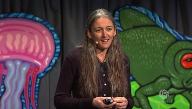 Monica Gagliano: Plant Intelligence and the Importance of Imagination In Science