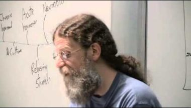 Robert Sapolsky Lecture 15: Human Sexual Behavior I