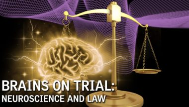 Brains on Trial: Neuroscience and Law