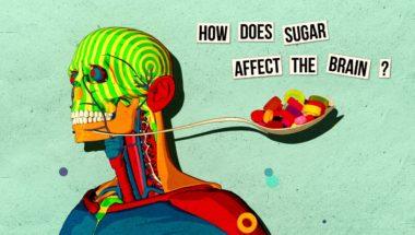 Nicole Avena: How sugar affects the brain