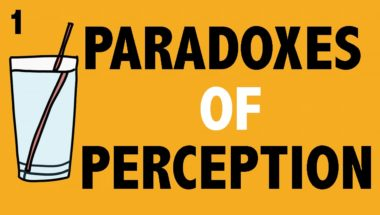 Epistemology: Paradoxes of Perception #1 (Argument from Illusion)