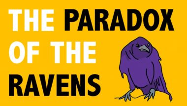 Epistemology: The Paradox of the Ravens