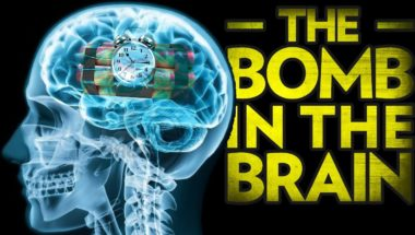 Stefan Molyneux: The Bomb in the Brain - Brain Development and Violence