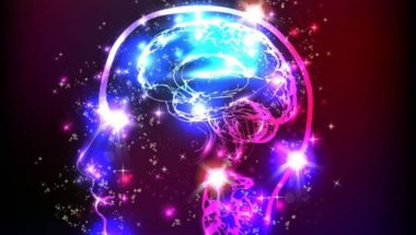 LSD Does Amazing Things To The Brain
