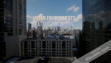 Neuroscience Minute: Your Brain on Green