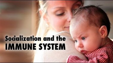 Socialization and the Immune System
