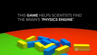 "Test Your Brain's ""Physics Engine"""