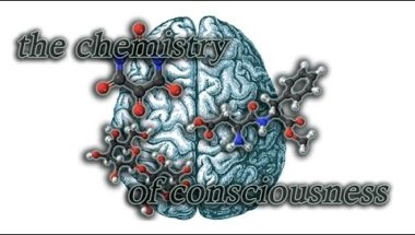 The Chemistry of Consciousness