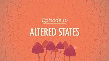 Crash Course Psychology #10: Altered States