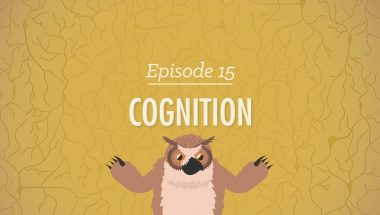 Crash Course Psychology #15: Cognition - How Your Mind Can Amaze and Betray You