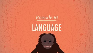 Crash Course Psychology #16: Language