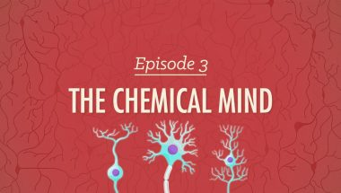 Crash Course Psychology #3: The Chemical Mind