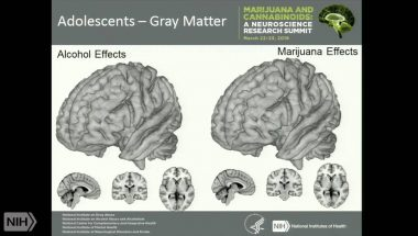 Neuroscience research: Marijuana use