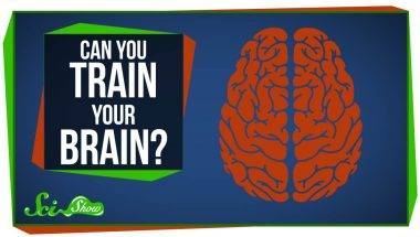 Can You Really 'Train' Your Brain?