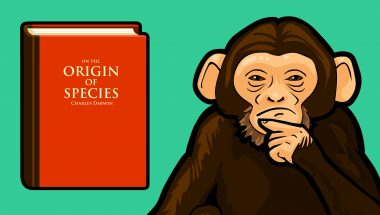 Does the Theory of Evolution Really Matter?